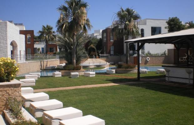 фото Costa Luvi Hotel (ex. The Luvi Hotel; Club Oleal) изображение №14
