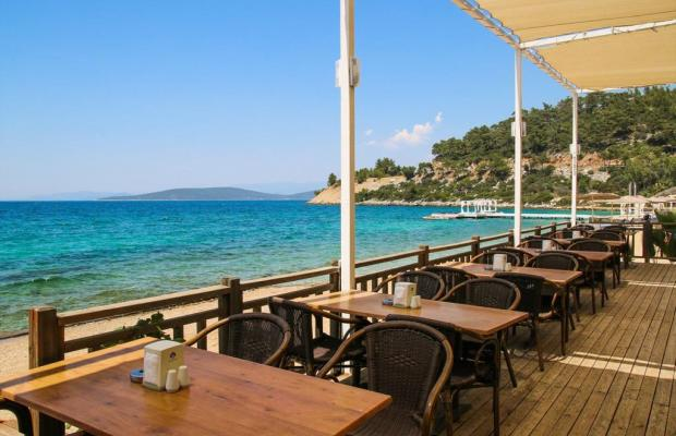фото Noa Hotels Bodrum Beach Club (ex. Litera Altinel; Resort Altinel) изображение №34