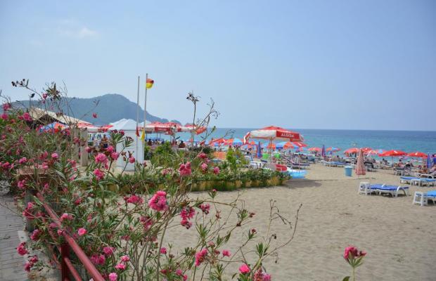 фото Kleopatra Dreams Beach изображение №6