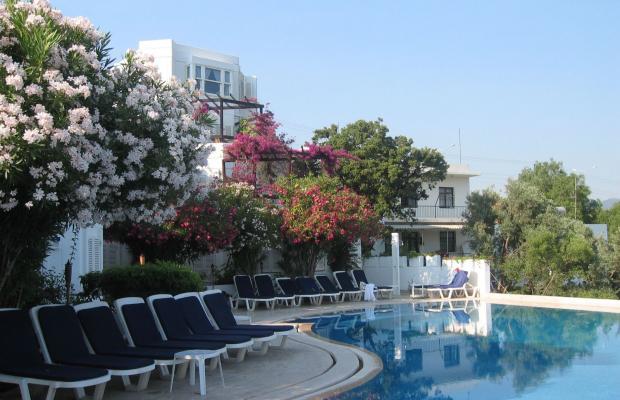 фотографии отеля Hotel Kalender (ex. Prens Hotel) изображение №7