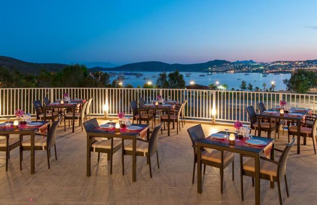 фотографии отеля Bodrum Beach Resort изображение №3