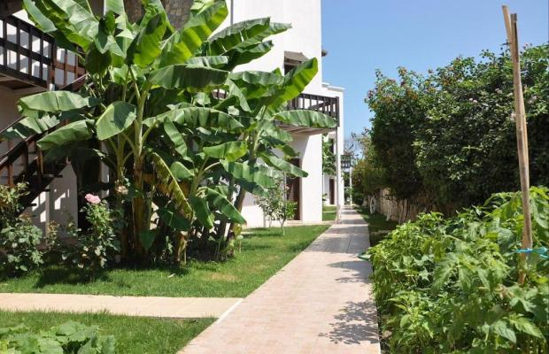 фото отеля Liona ButikHan Beach Hotel (ex. ButikHan Beach Hotel) изображение №17