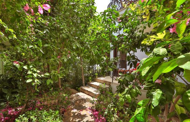 фотографии отеля Sunny Garden Nilufer изображение №71