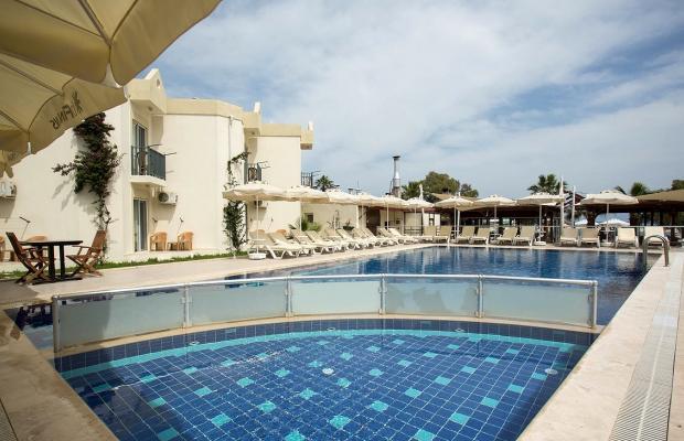 фотографии отеля Viras Hotel изображение №3