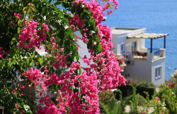 фото отеля Aktur Residence изображение №57