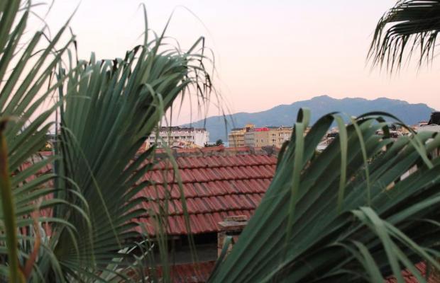 фото отеля Green Palm изображение №5