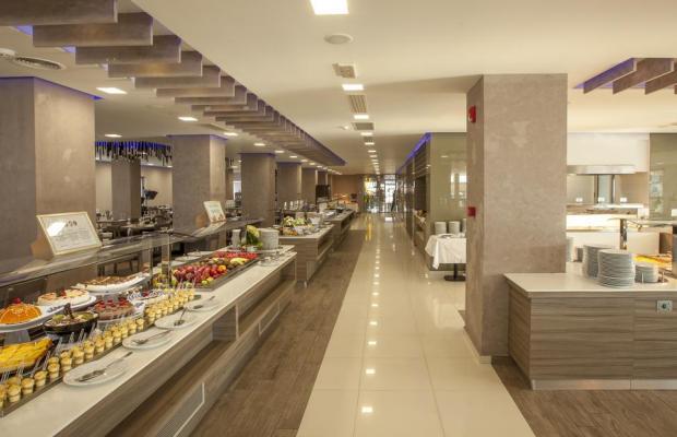фото отеля Carolina Mare Hotel (ex. Phaedra Beach Hotel) изображение №29