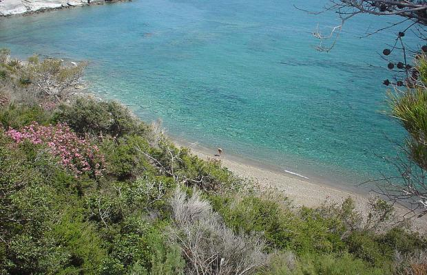 фото Eden Beach Apartments изображение №14
