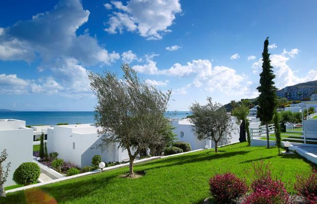 фото отеля Dimitra Beach Resort изображение №61