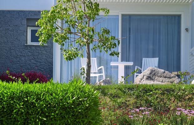 фото отеля Dimitra Beach Resort изображение №13