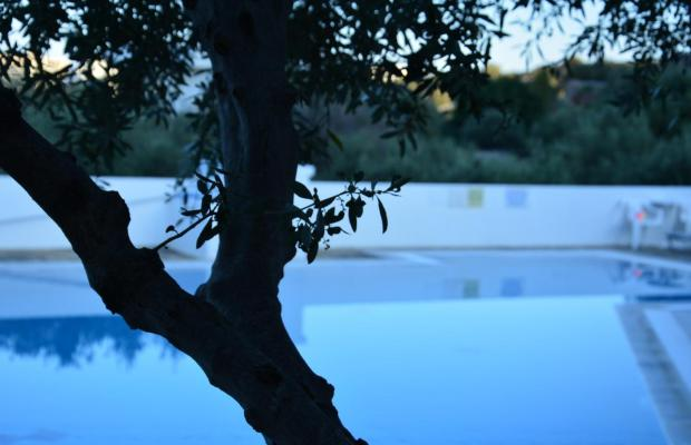 фотографии Paradise Primavera Apartments изображение №4