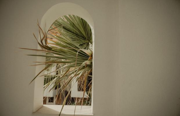 фотографии Residence Villas изображение №4