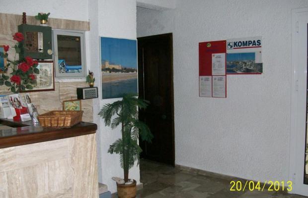 фотографии отеля Despina Hotel изображение №3