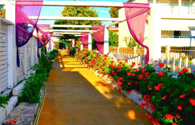 фотографии отеля Halkidiki Royal Hotel изображение №7