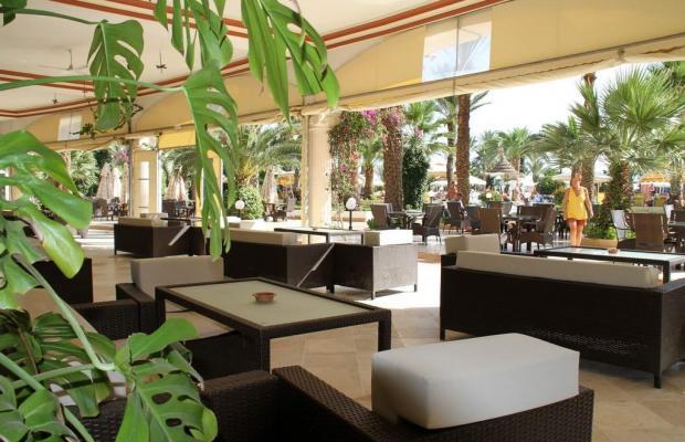 фотографии отеля Riadh Palms изображение №3