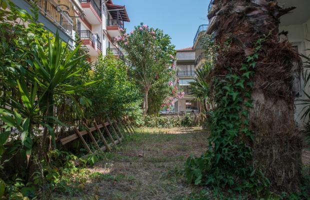 фото отеля Alexandros Hotel изображение №25