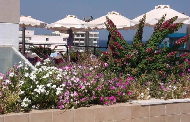 фото отеля Calypso Palace изображение №25