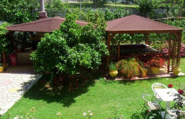 фотографии Korali House изображение №8