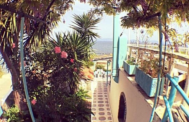 фотографии отеля Avra Budget Beach Hotel изображение №19