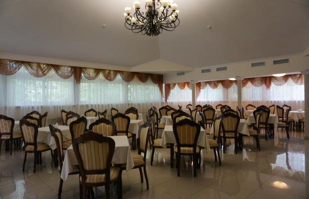 фото отеля Светлана (Svetlana) изображение №29
