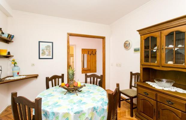 фотографии отеля Apartments Petra (Babin Kuk) изображение №19