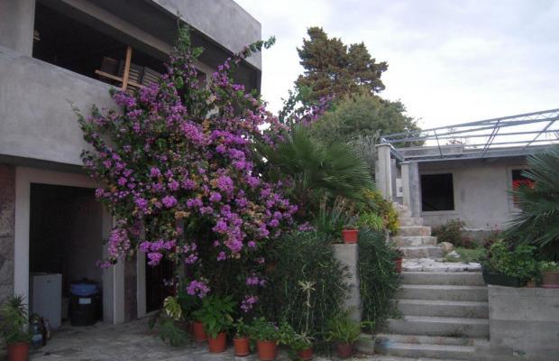 фото отеля Apartments Djuro изображение №5
