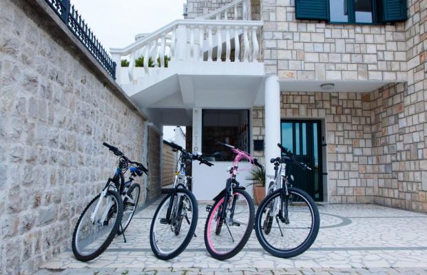фото отеля Apartments Pasha изображение №25
