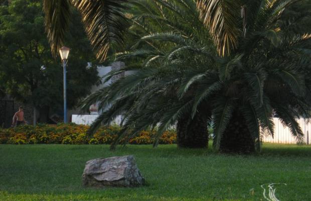 фото Vila Branka изображение №18