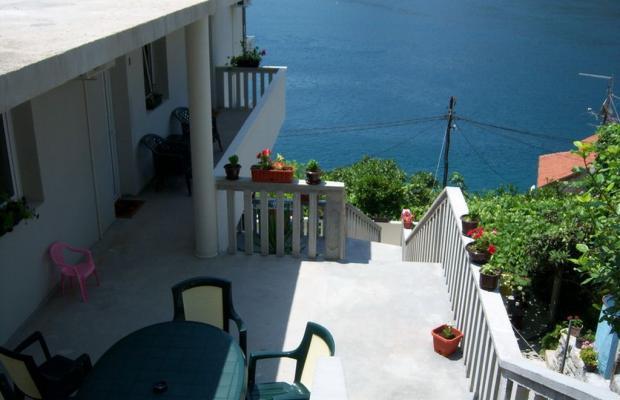 фотографии отеля Apartments Villa Antonia изображение №23