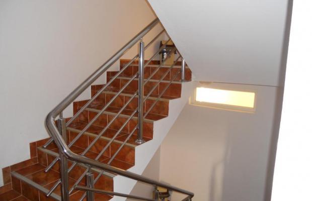 фотографии Apartments LakiCevic изображение №8