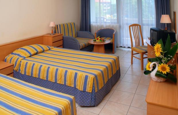 фотографии отеля Lebed (Лебедь) изображение №7