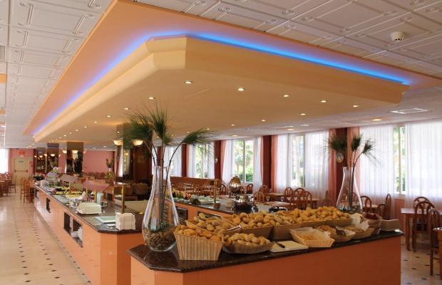 фотографии отеля Parasol Gardens Hotel изображение №15
