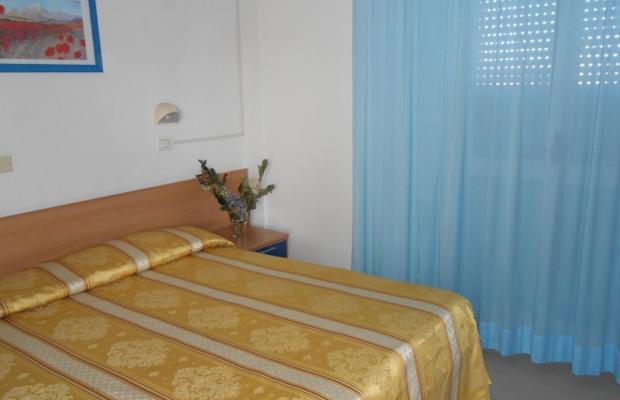 фотографии отеля New Primula изображение №19