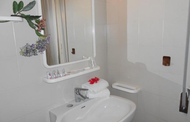 фотографии отеля New Primula изображение №3