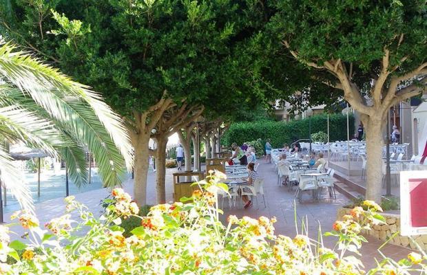 фото Albir Garden Resort изображение №10