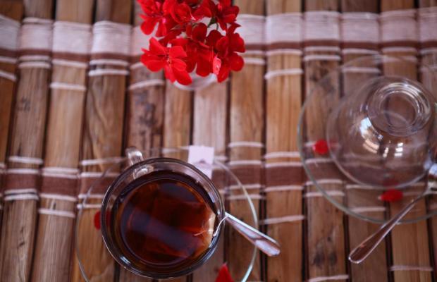 фотографии отеля Torre Hotel изображение №39