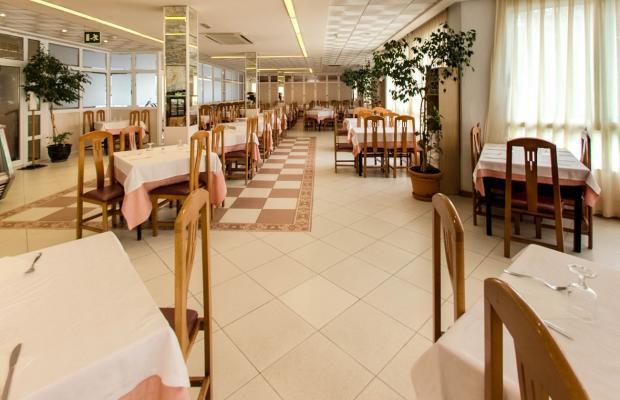 фотографии отеля Medsur Alone изображение №11