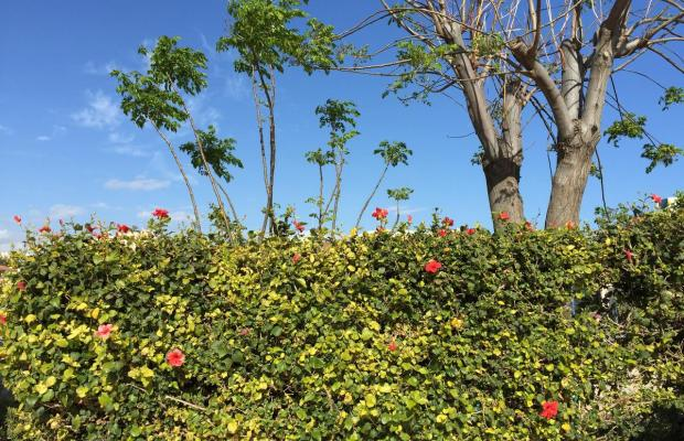 фото Blue Crane Apts изображение №14