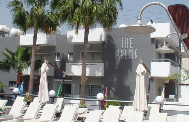 фотографии The Palms Hotel Apartments  изображение №36