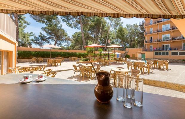 фотографии отеля Costa Mediterraneo изображение №27