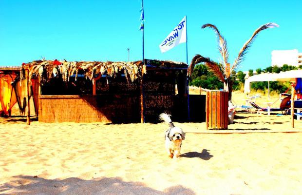 фотографии Paradise Beach изображение №24