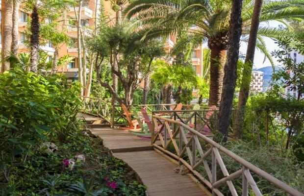 фото Apartamentos Globales Nova изображение №2
