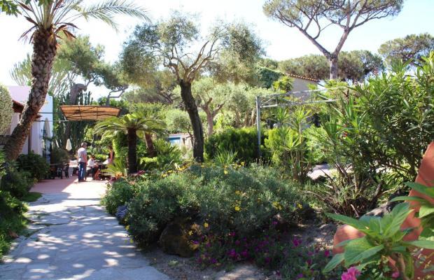фотографии отеля Pineta изображение №19
