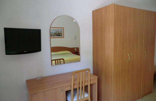 фото La Pineta изображение №2