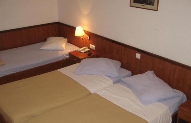 фотографии отеля Aurora Hotel (Аврора) изображение №3