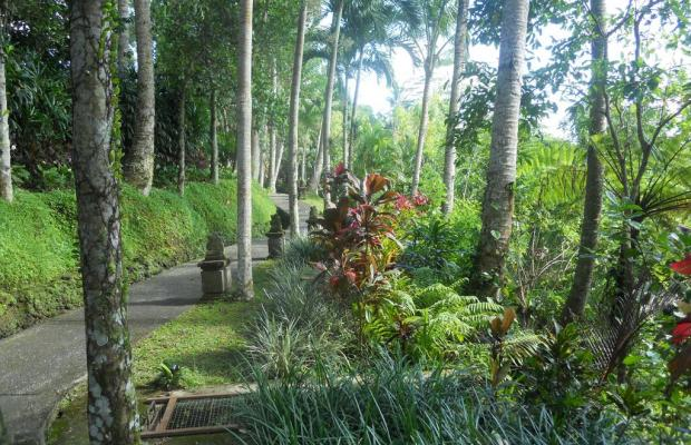 фото отеля Villa Prana Shanti изображение №17