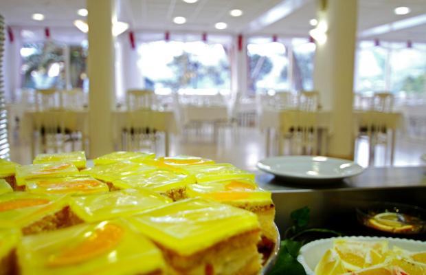 фотографии Hotel Cavtat (ex. Iberostar Cavtat) изображение №36