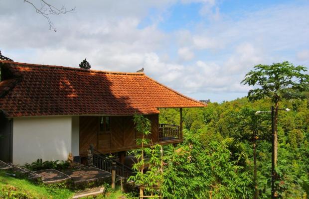 фотографии отеля Melanting Cottages изображение №3