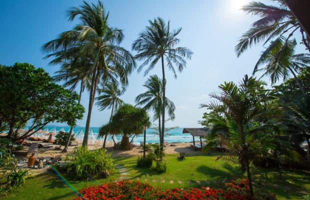 фотографии отеля New Star Beach Resort изображение №43