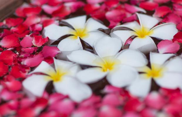 фото Mercure Hotel Pattaya (ex. Mercure Accor Pattaya) изображение №46